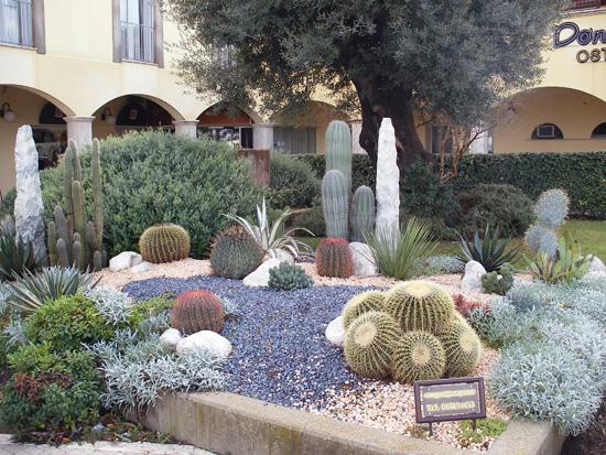 Grossi francesco floricola news ed eventi giardino - Giardino roccioso piante ...